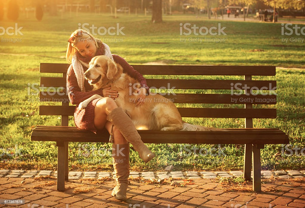 Women sitting with golden retriever in autumn park stock photo