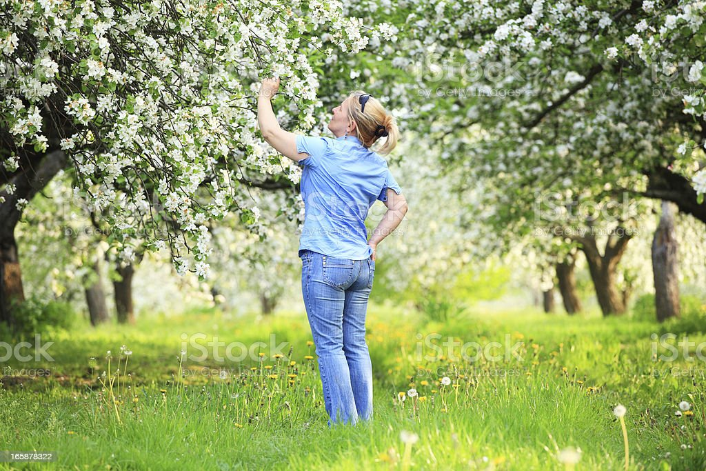 Women standing in the spring orchard royalty-free stock photo