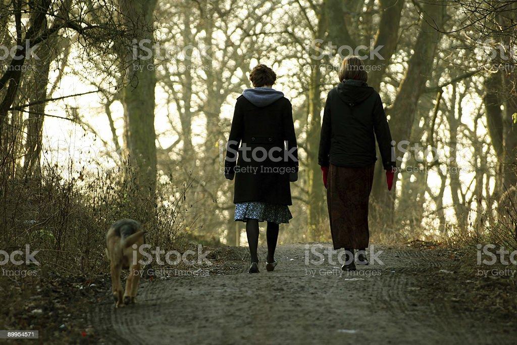 Women Walking Dog stock photo