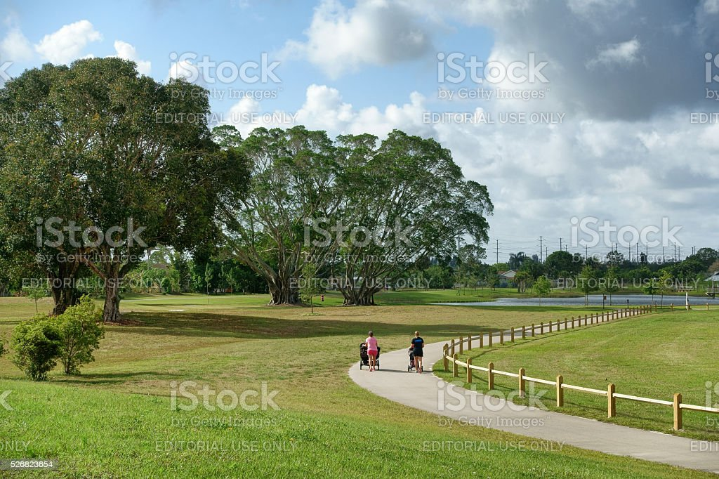 Women with baby strollers walking in a park stock photo
