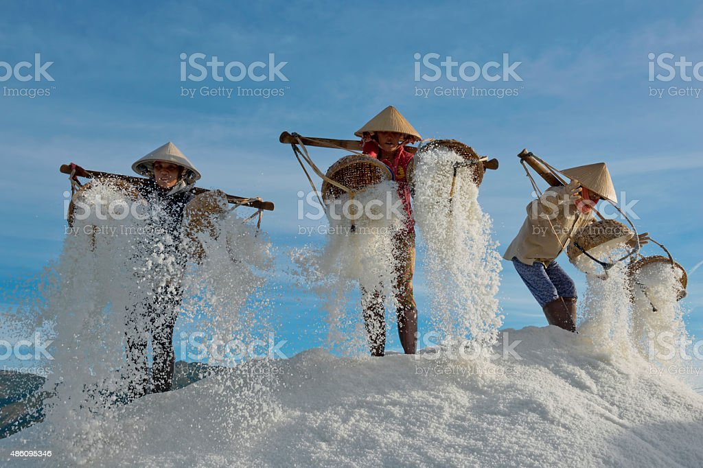 Women Workers Emptying Sea Salt From Baskets stock photo