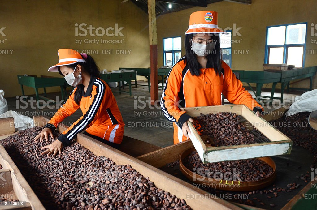 Women workers stock photo