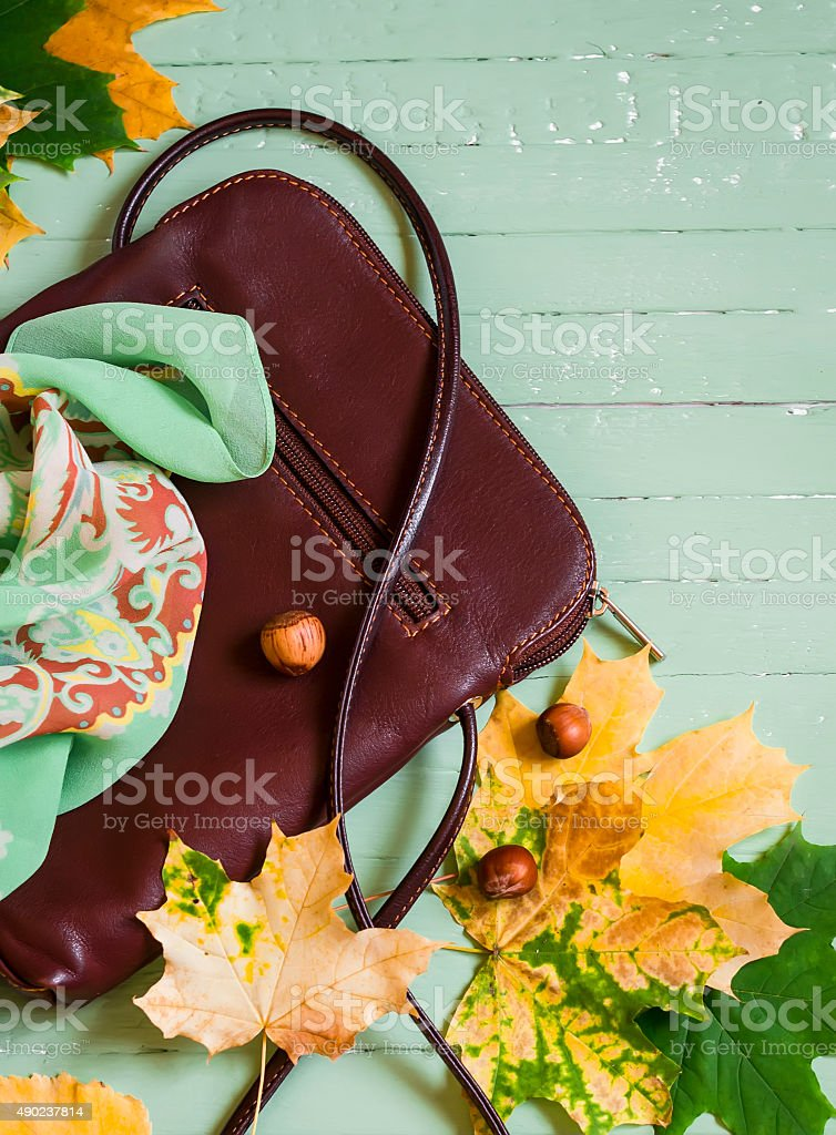 women's fall accessories - the scarf and bag stock photo