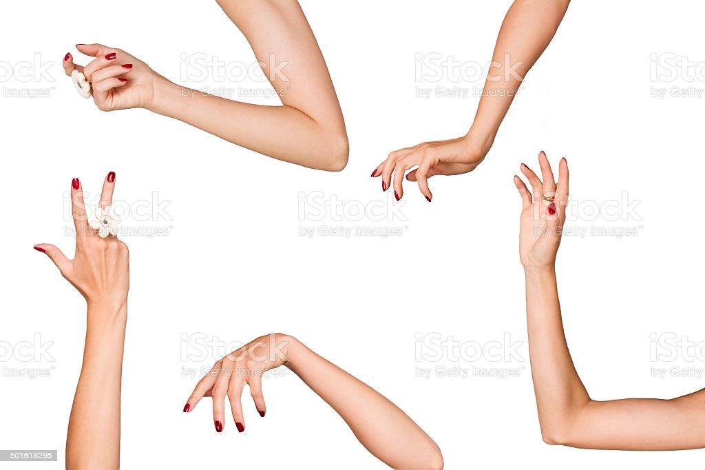 Women's hands royalty-free stock photo