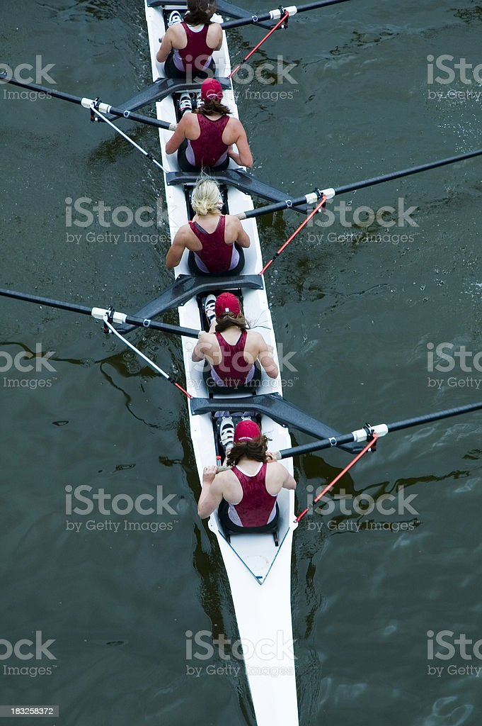 Women's Rowing From Above royalty-free stock photo