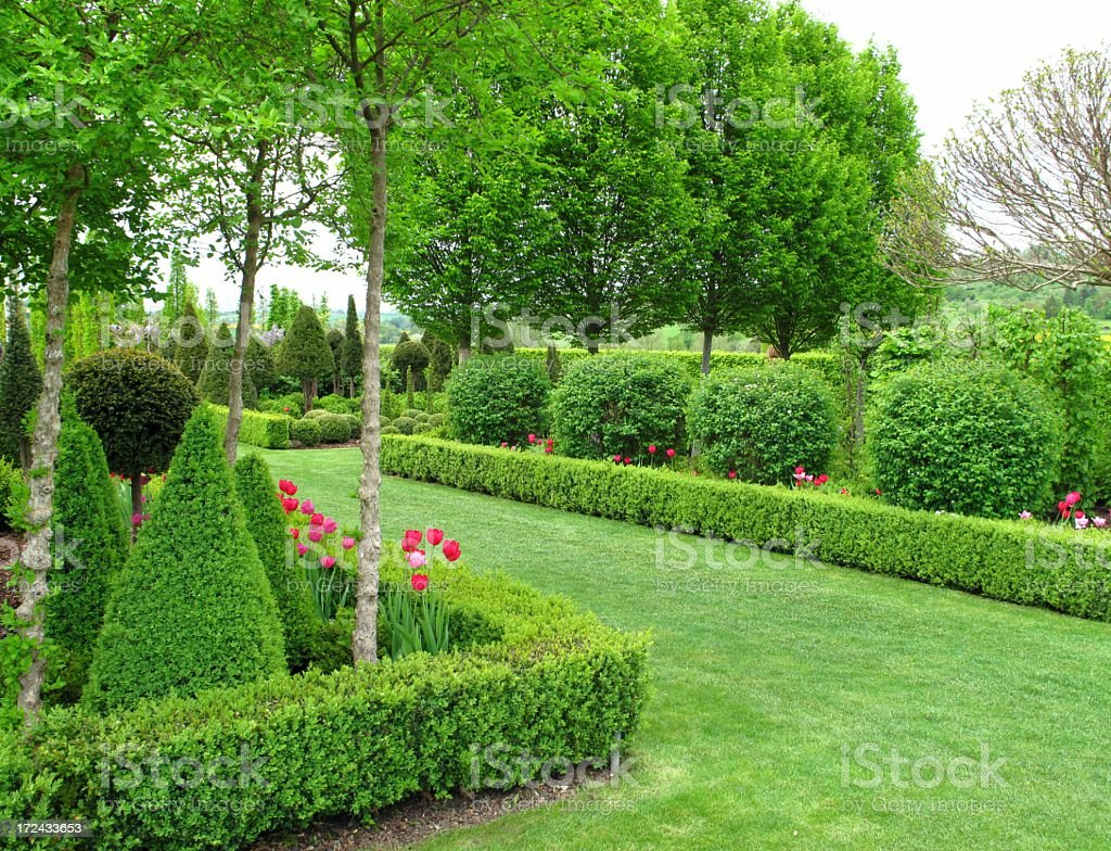 Wonderful garden in springtime stock photo