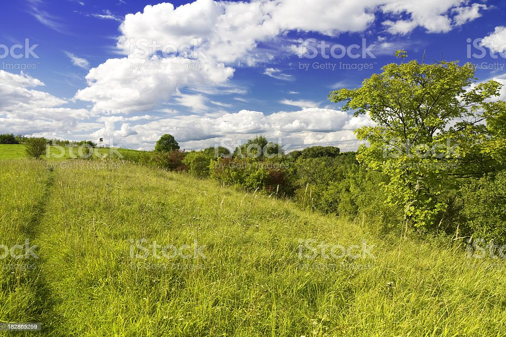 Wonderful landscape in summer stock photo