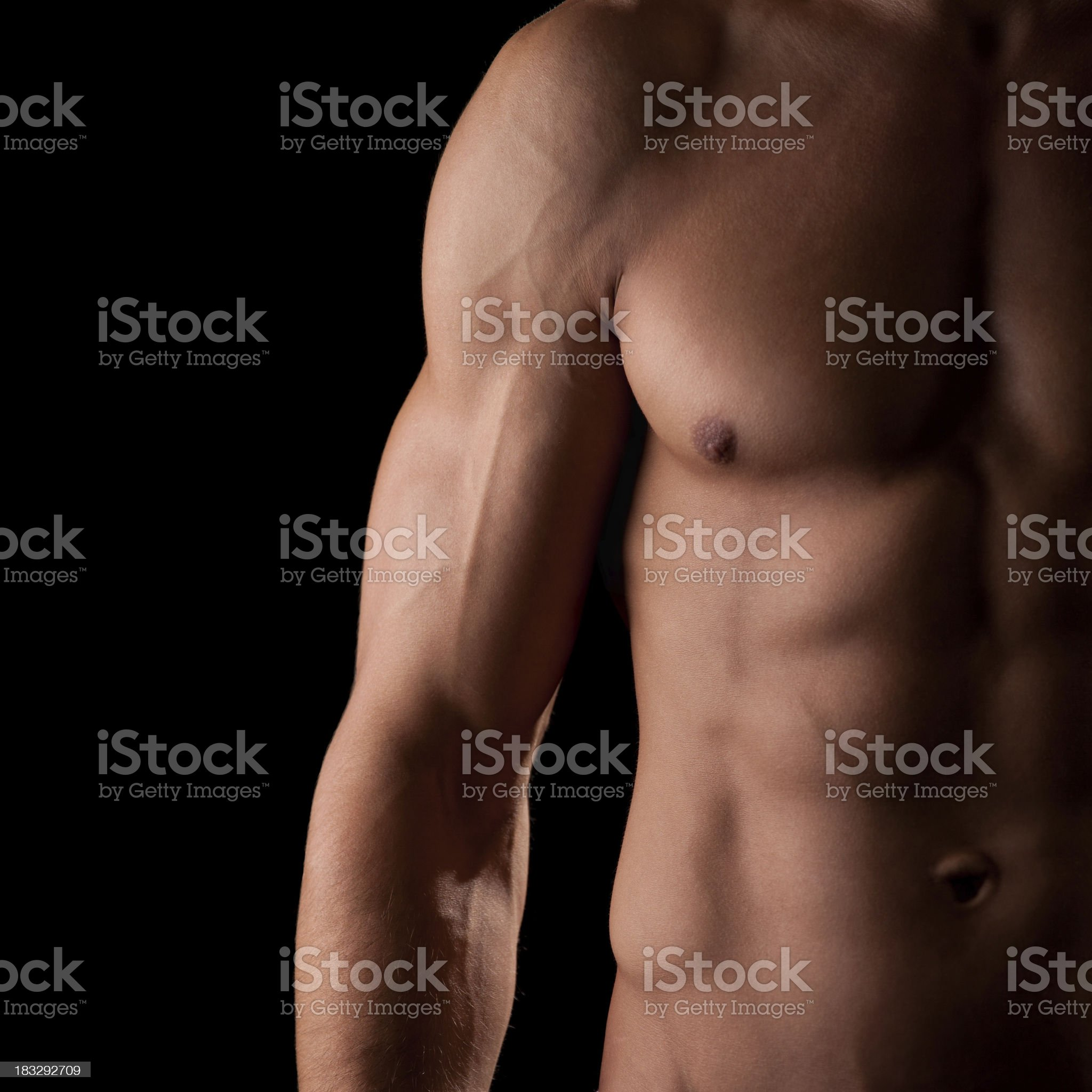 Wonderful male torso royalty-free stock photo
