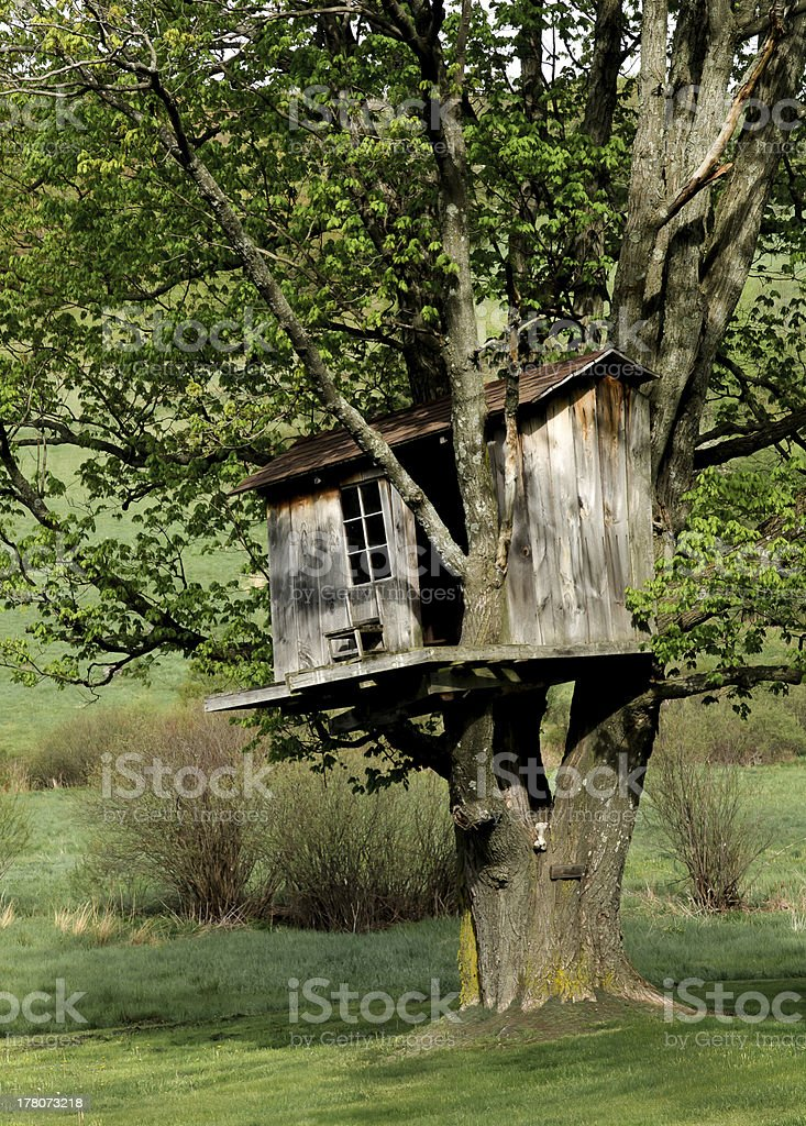 Wonderful Old Treehouse in the Country. stock photo