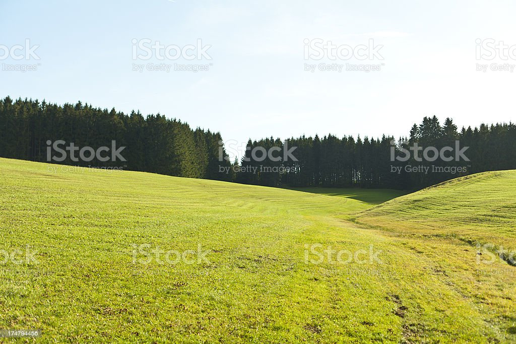 Wonderful panoramic view at a field stock photo