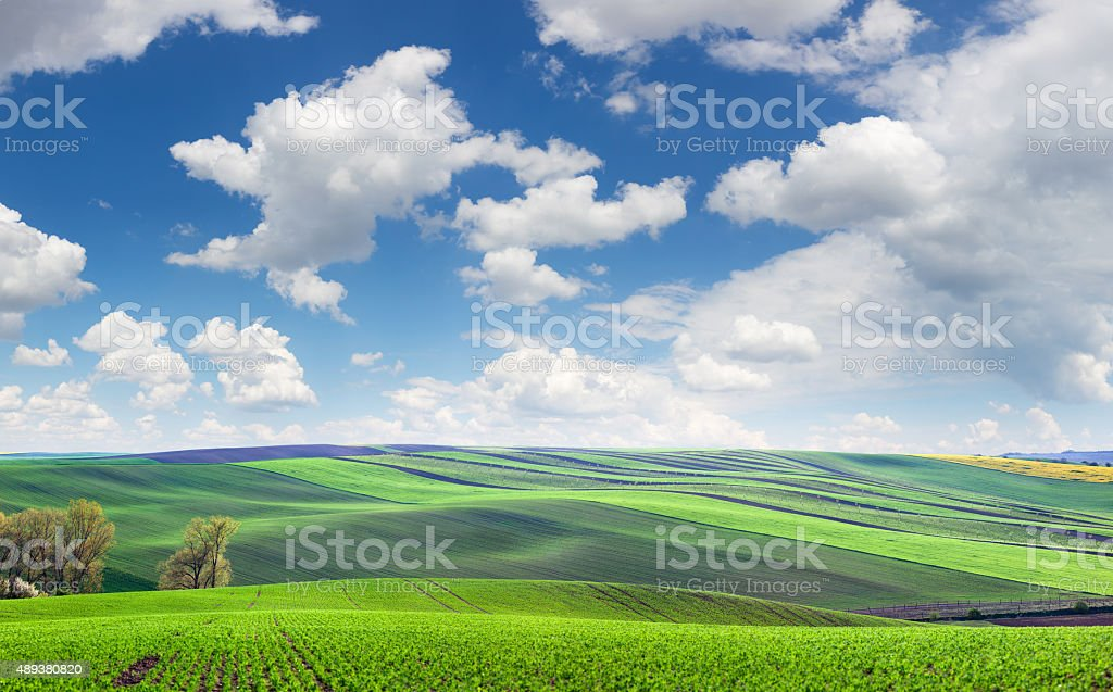Wonderful panoramic view of fields in beautiful colorful and str stock photo