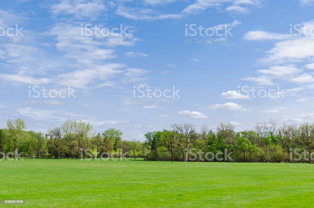 wonderful sunny day in park, spring time stock photo