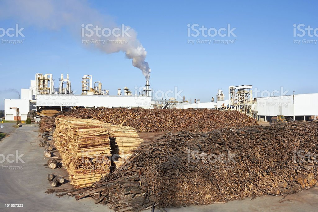 Wood against Paper Factory royalty-free stock photo