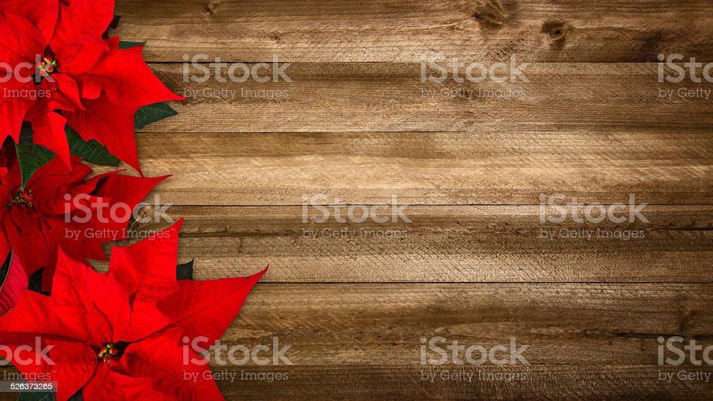 Wood background for Christmas stock photo