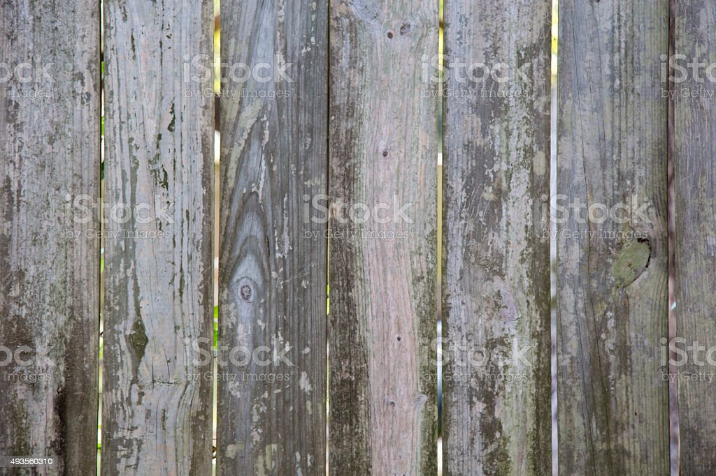 Wood Background Texture royalty-free stock photo