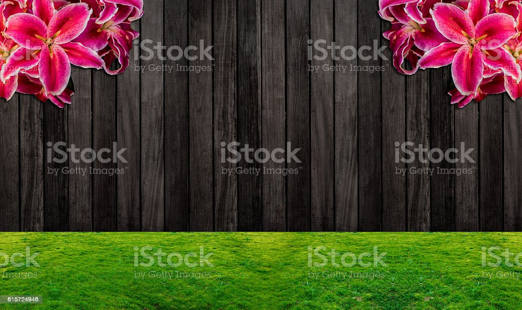 wood background, wooden fence and the garden with Lilly flower stock photo
