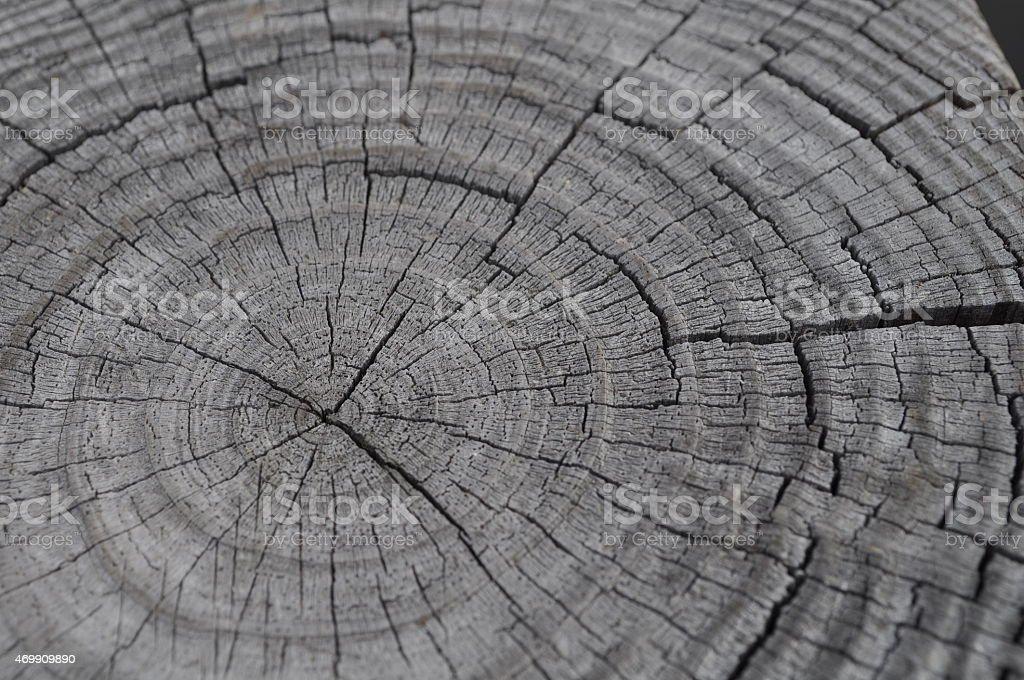 Wood background1 stock photo
