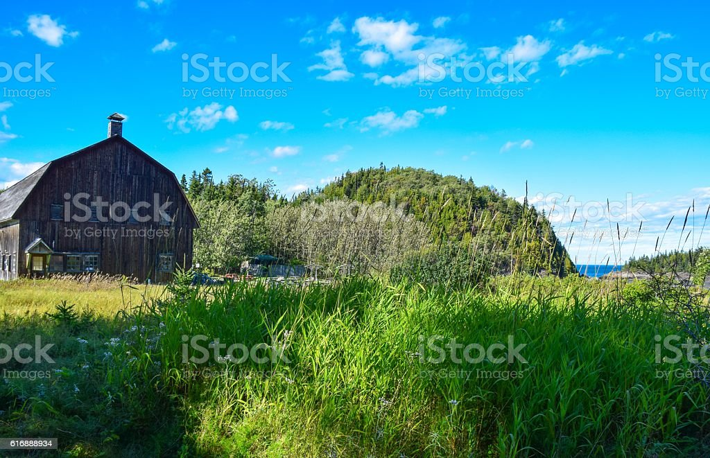 Wood barn standing in a calm summer day royalty-free stock photo