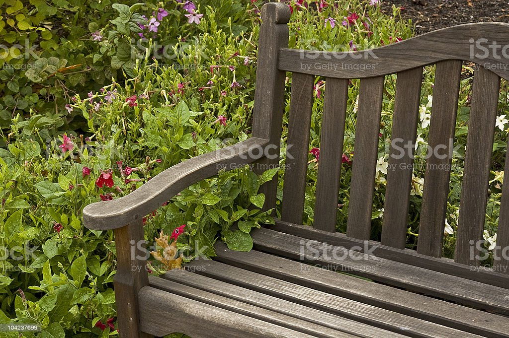 Wood bench. royalty-free stock photo