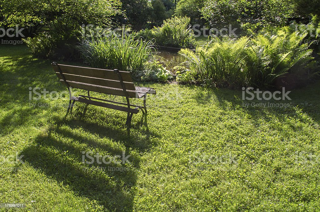 wood bench with foliage royalty-free stock photo
