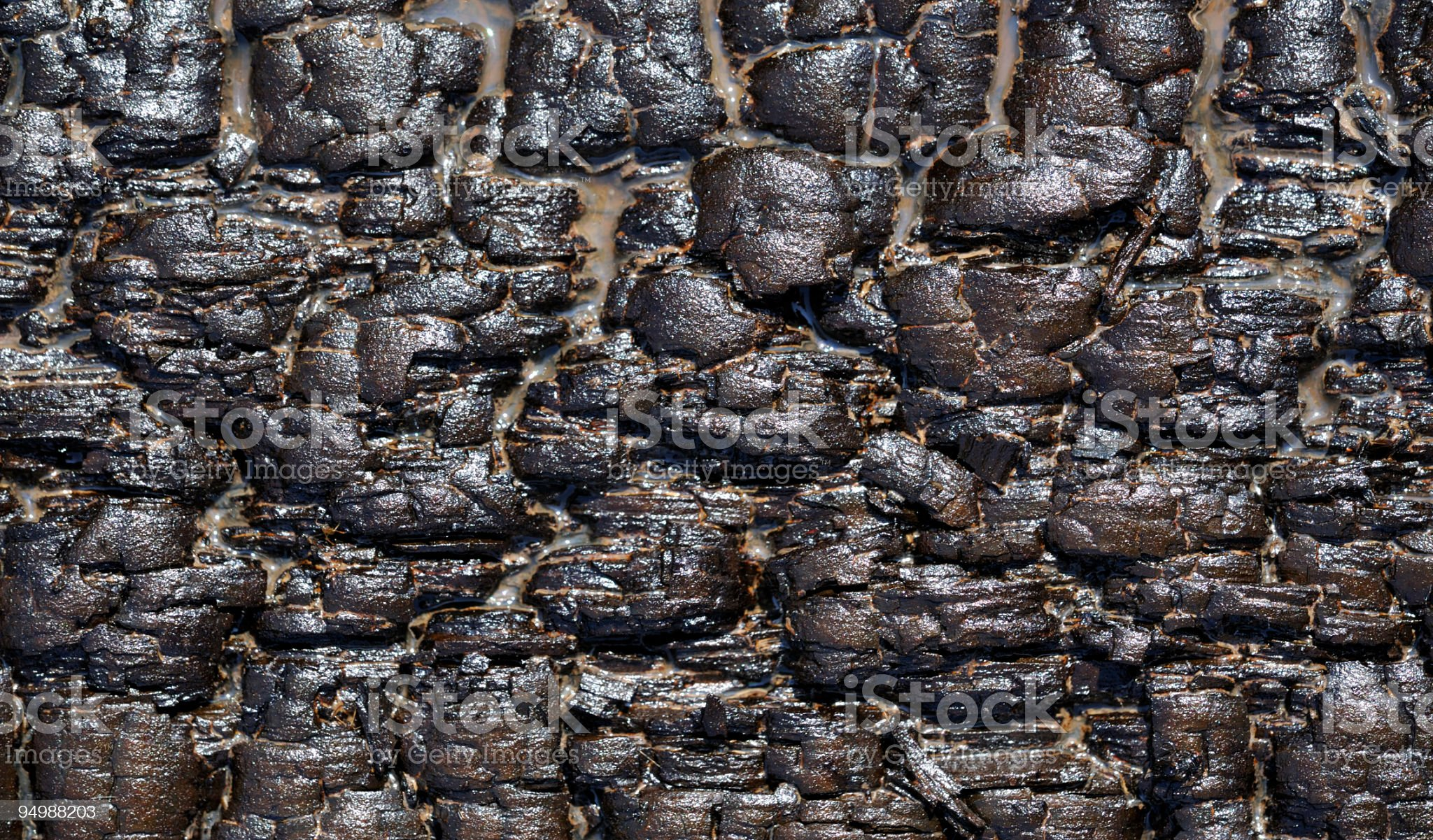 Wood block drenched in oil royalty-free stock photo