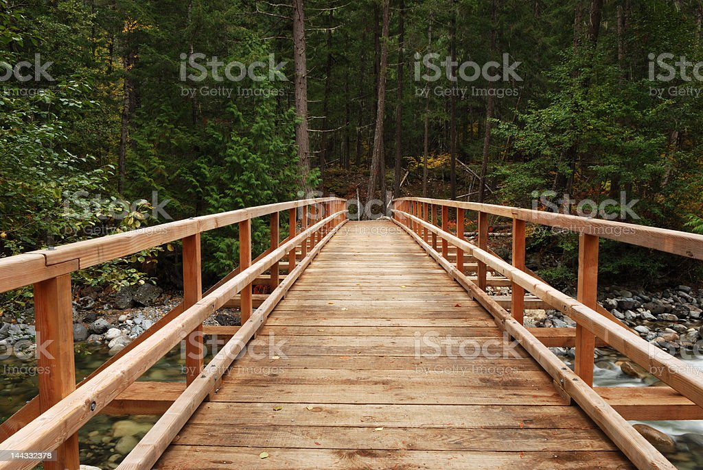 wood bridge in forest royalty-free stock photo