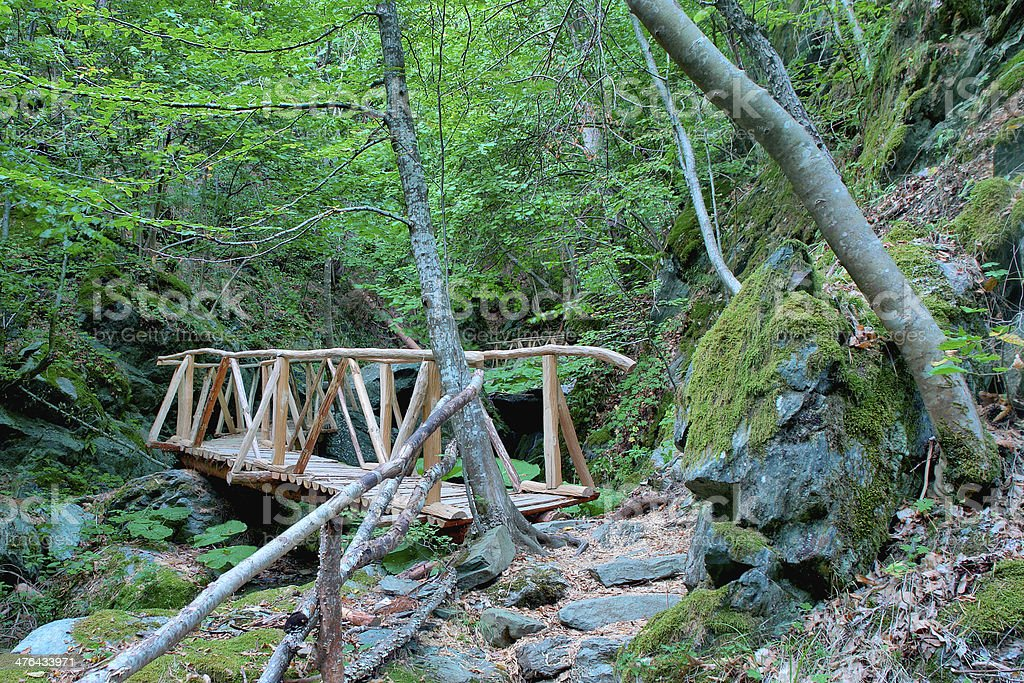 wood bridge path in ecological clean environment spring, Macedonia royalty-free stock photo