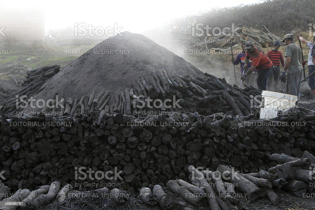 Wood Coal royalty-free stock photo