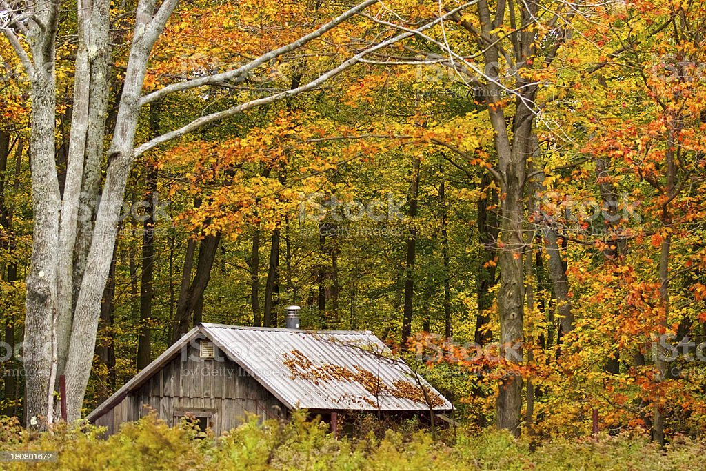 Wood cottage surrounded by beautiful Fall trees royalty-free stock photo