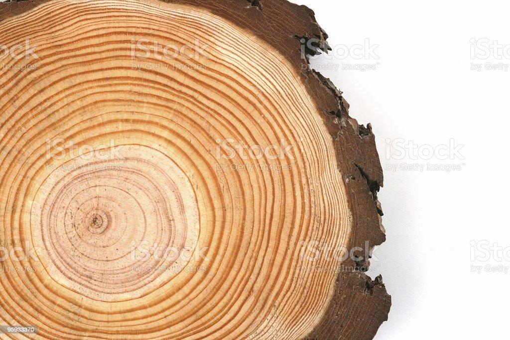 wood crosscut royalty-free stock photo