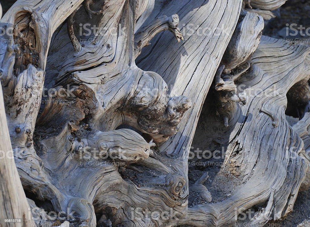 Wood Detail royalty-free stock photo
