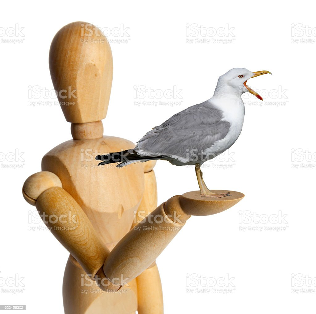 Wood Doll with a Seagull stock photo