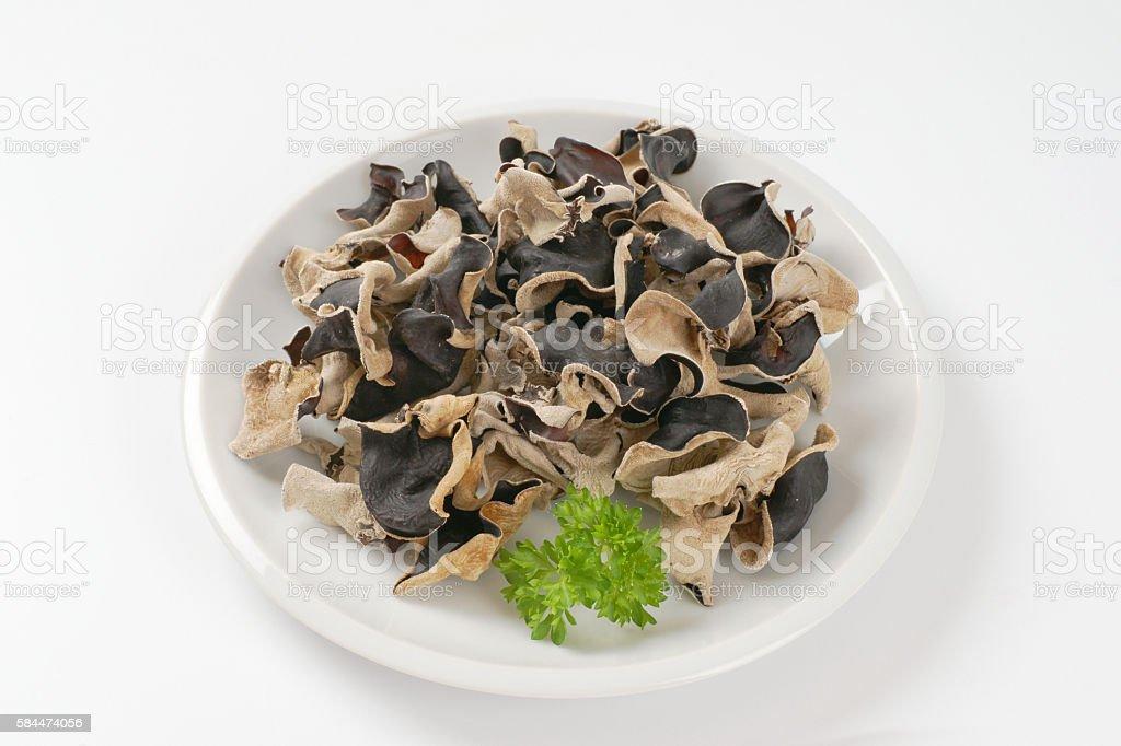 Wood ear mushrooms stock photo
