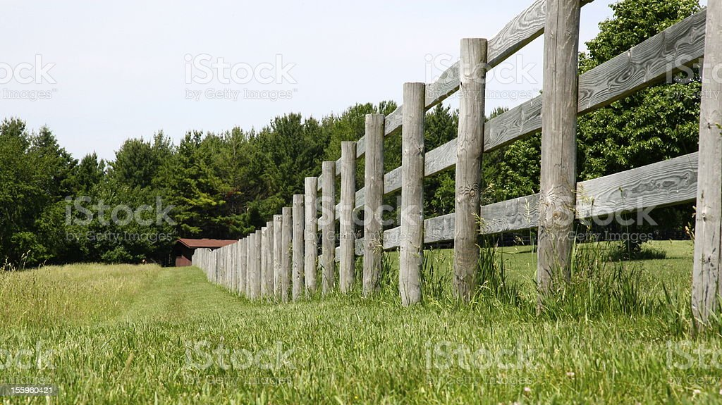 Wood fence line and field in summer stock photo