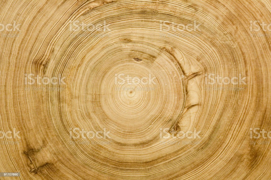 wood grain background texture royalty-free stock photo