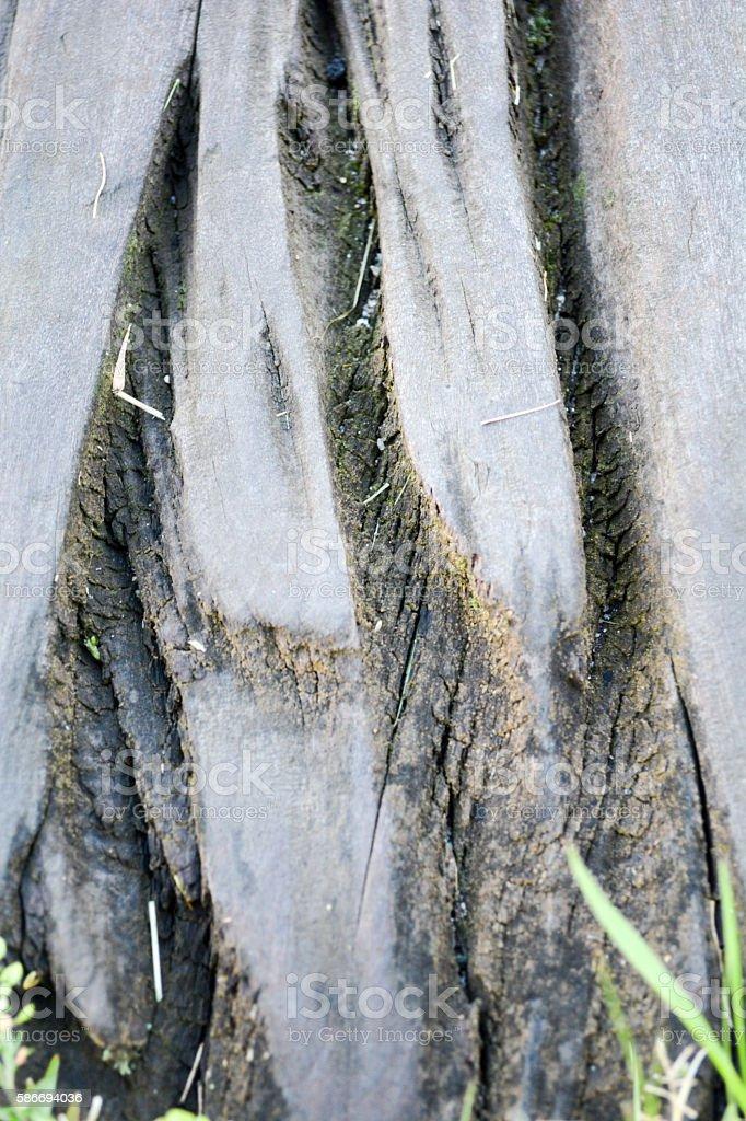 Wood Grain Close up stock photo