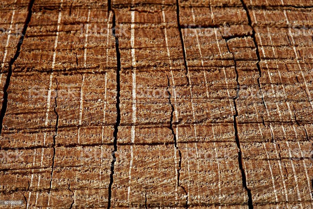 Wood Grain stock photo