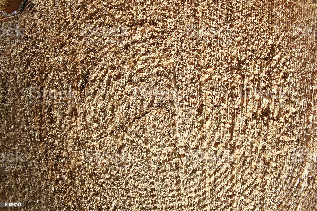 Wood grain texture royalty-free stock photo