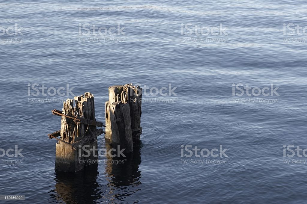 Wood in Water stock photo