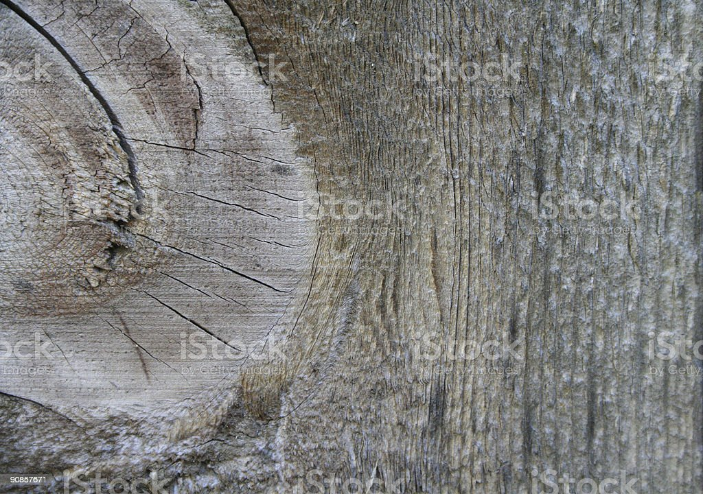 Wood Knot in Board royalty-free stock photo
