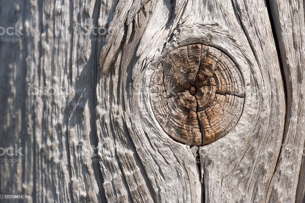 Wood Knot royalty-free stock photo
