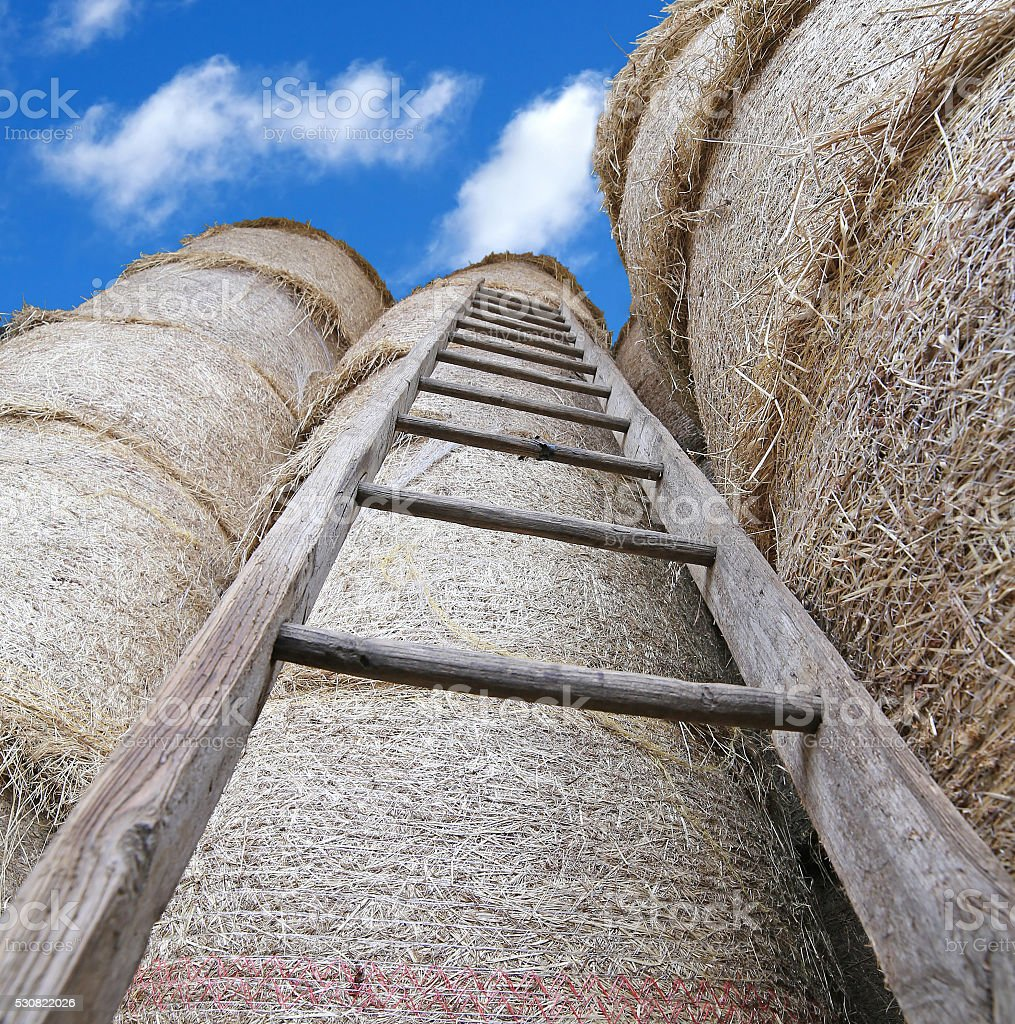 wood ladder in the barn with bales of hay stock photo