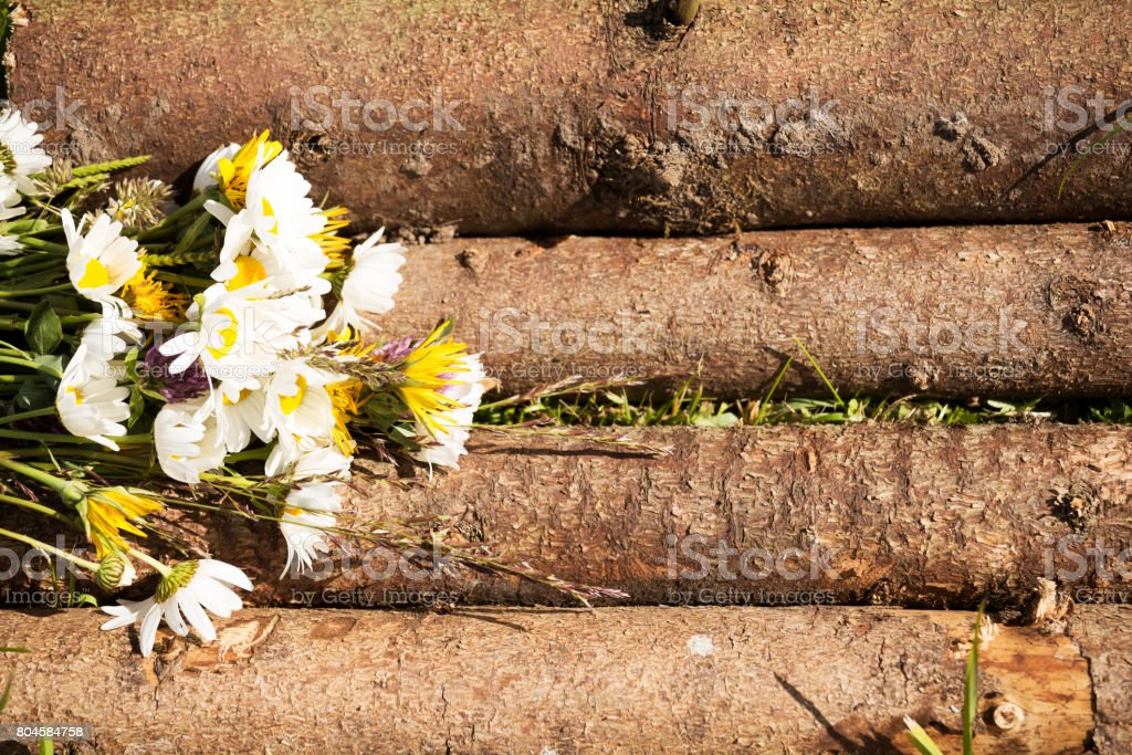 Wood Log Table Top With Meadow Flowers Royalty Free Stock Photo