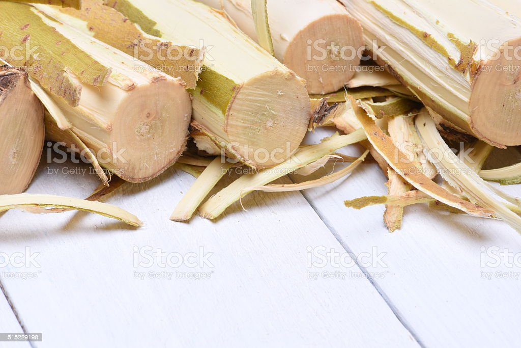 Wood log willow with bark stock photo