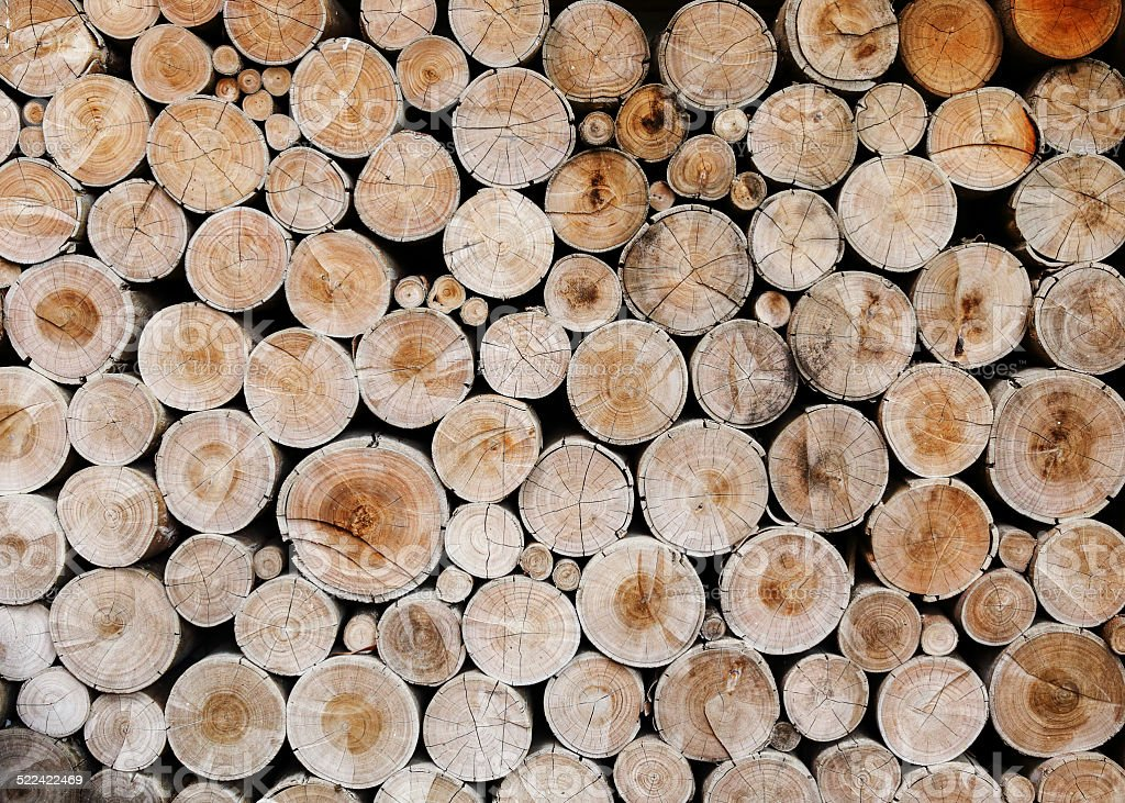 wood logs for industry stock photo