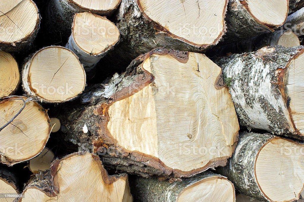 Wood logs royalty-free stock photo