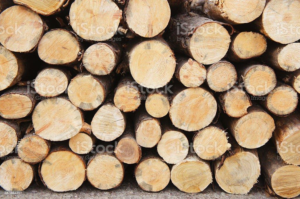 Wood logs stock photo