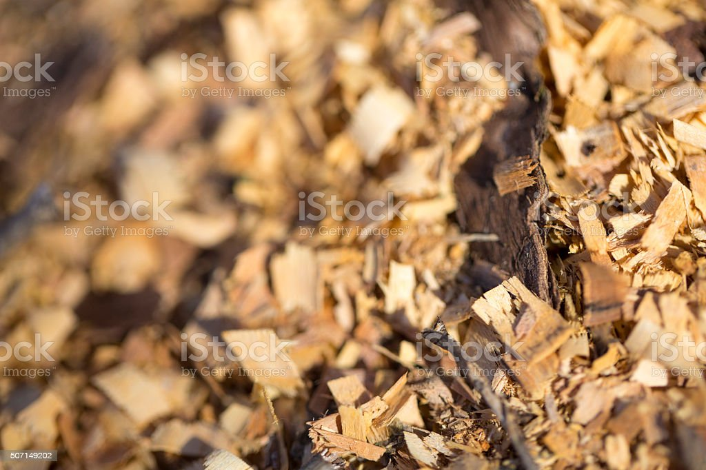 Wood - Material, Bark, Brown stock photo