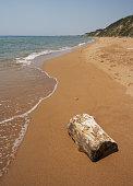 Wood on a beach, Greece