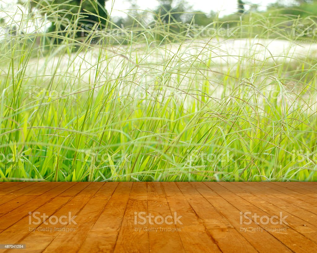 Wood path front of soft green grass royalty-free stock photo
